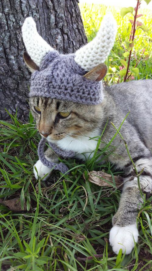 Knitted Viking Helmet For Cats