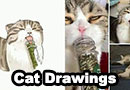 Cat Photo Drawings