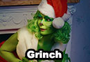 The Grinch Cosplay
