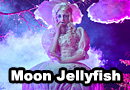Moon Jellyfish Original Design Cosplay
