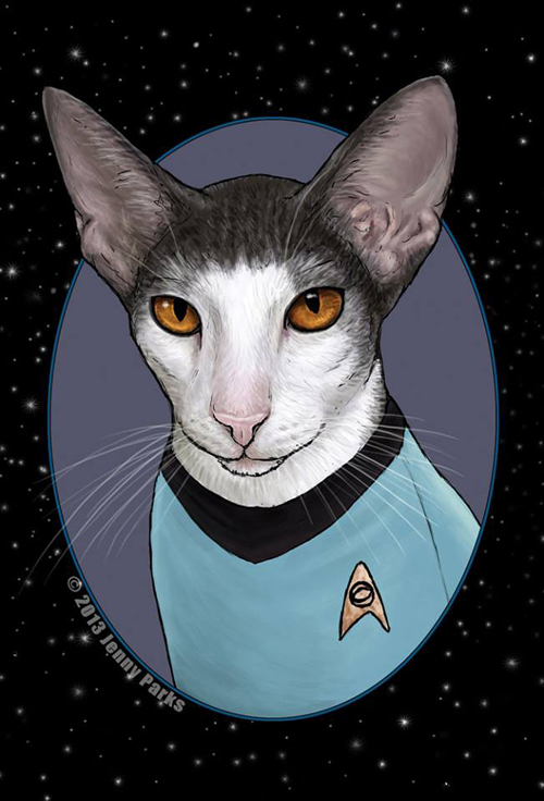 Star Trek Cats Fan Art